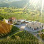 lacerta-winery